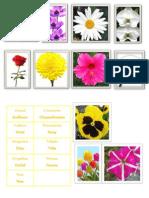 Album Flores Machito