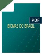 Biomrds Boi