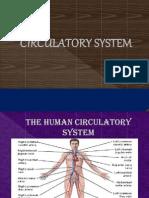 1.Circulatory System Intro