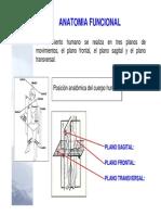 Anatomia Biomecanica Antropometria 2