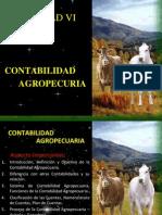 Contabilidad Agropecuaria PDF (1)