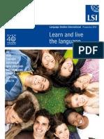 2010 LSI Brochure