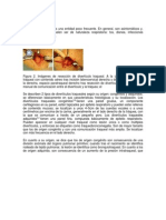 Documento AP Respiratorio