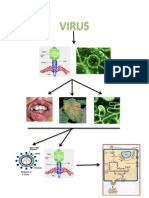 Mapamental Virus
