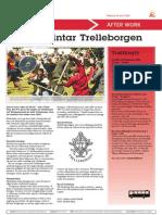 140616_Vikingar Intar Trelleborgen
