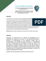 informe flavonoides