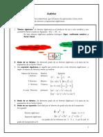 Guia de Apoyo Algebra y Funciones