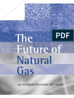 NaturalGas Report