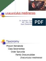 Dracunculus Medinensis Onchocerca Loa Loa