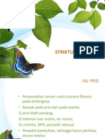 Stuktir - Copy
