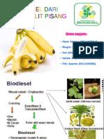 Biodiesel Dari Limbah Kulit Pisang