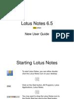 122146163-lotus-notes