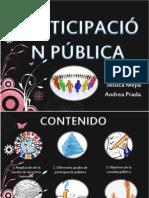 Exposicion Participacion Publica