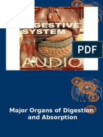 Major Organs of Digestion and Absorption
