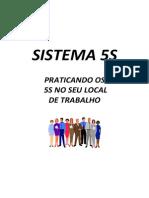 Manual Basico 5s