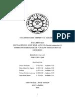 Proposal PKM-P