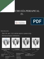 cirugia apical (1)
