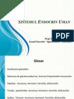 Sistemul Endocrin Uman Bun (2)