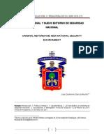 Reforma Penal y Nuevo Entorno de Seguridad Nacional