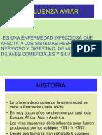 Influenza Aviar en p p