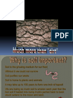 Soil Formation 2