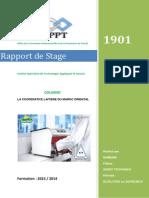 Rapport de Stage Barbare