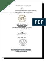 27563396 Financial Inclusion PDF File