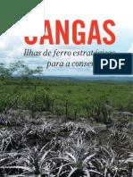 cangas295