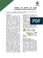 Primer Informe Vegetal Final
