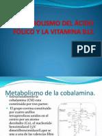 Metabolismo Del Ácido Fólico y La Vitamina b12