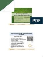 BDP_16_08_04_2014_Folhas2_ControlGeneticDesenv.pdf