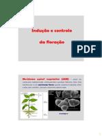 BDP_20_-_Controlo_da_floracao.pdf
