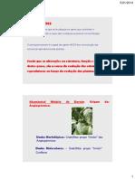 BDP_24_-_Evolucao_dos_genes_homeoticos_Florais.pdf