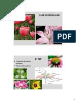 BDP_28_-_Reproducao_Feminino.pdf