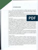 Modelo endeavor.pdf