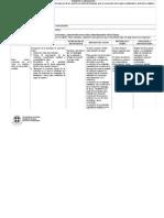 Formato Matriz de Planificacion 2013