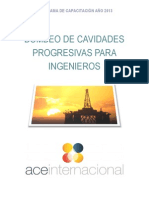 Bombas de Cavidades Progresivas - Dise_o, Soluci_n y Optimizaci_n.