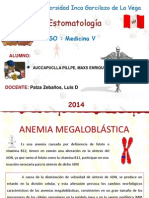 Anemia Maxs