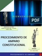 105922248 Procedimiento de Amparo Constitucional