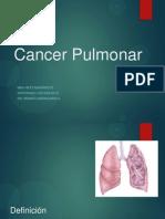 CA Pulmonar Cx 2014