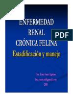 Estadificacion Manejo Felinos Con ERC Dra Lina Sanz3