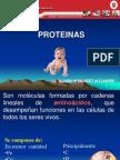 03 Proteinas Une Listo