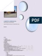 CARPETA GERENCIAL 2014