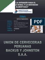 Ratios Financieros(Maycol Caso) (2)