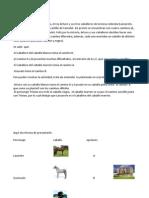 Dallane Sanchez Eje2 Actividad5.Docx.actualizado16junio