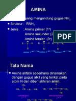 amina-ppt
