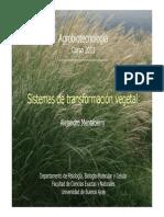 2011_5 Transformacion Vegetal