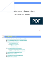 Intcathetcap7preparacao de Catalisadores 7 1229206878506139 1