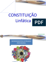 Constitución Linfática