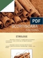Scortisoara PDF